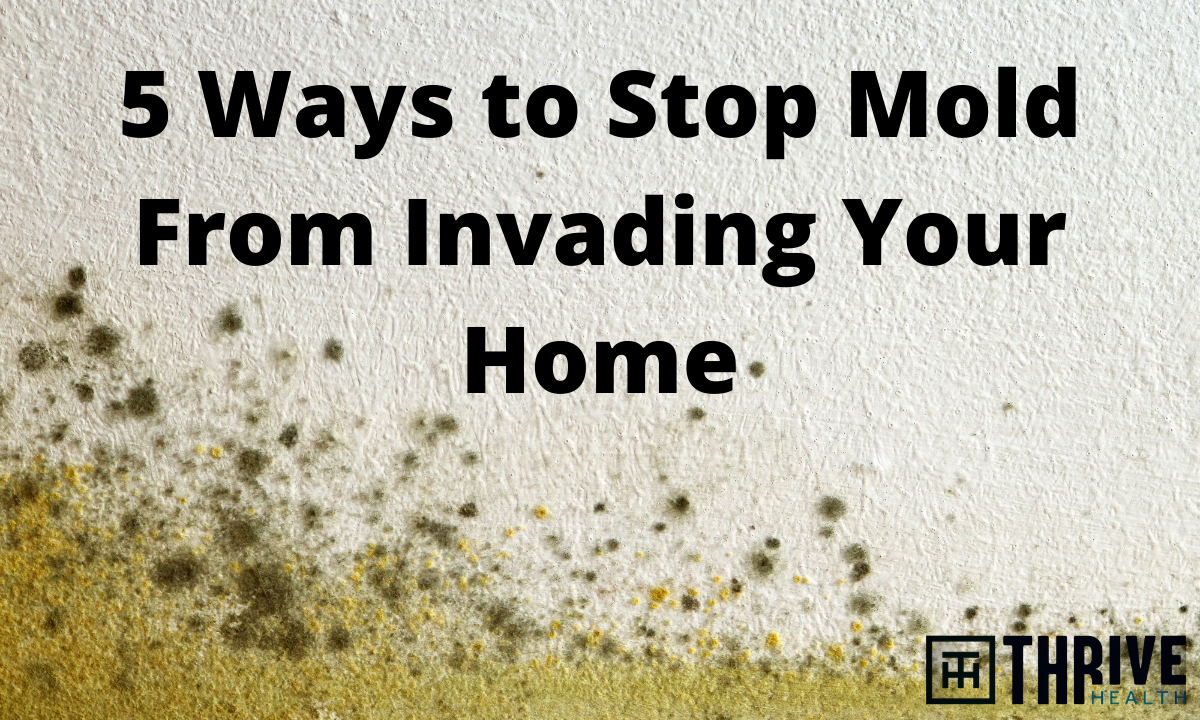 EXPOSED: Ways to Prevent Mold Growth and Potential Health Consequences